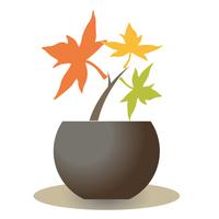 カエデの苗・3色ロゴ風