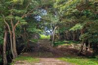 米子城趾 登城路の風景