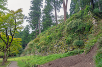 出石城 森の中の石垣
