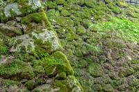 出石城の石垣