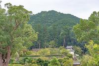 出石城と有子山の風景