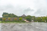 雨の中の篠山城