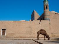 ヒヴェのイチャン・カラの風景_ウズベキスタン