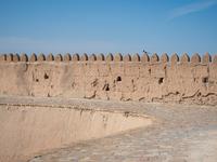 イチャン・カラの城壁にとまる小鳥
