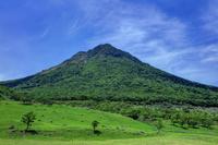 新緑の由布岳