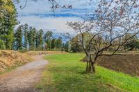 春の箕輪城の本丸の風景