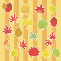 秋の落ち葉セット白枠(いちょう、かえで、もみじ)