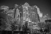 東京都港区赤坂の夜桜と街並み