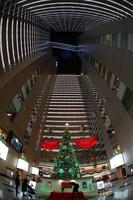 クリスマスツリーと高層ビルのイメージ