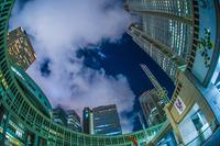 東京都庁の夜景