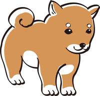 しば犬 カラー かわいい 子犬 人気 犬
