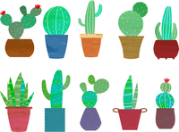 Watercolor style cactus set