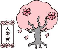 さくら 桜の木 花吹雪 入学式 看板 小学校 正門 春