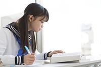 勉強する女子校生