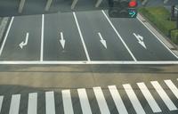 道路と横断歩道