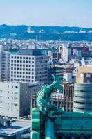 和歌山城のシャチホコと市街