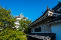 快晴の和歌山城