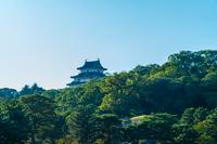 緑と和歌山城