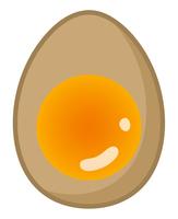煮卵の断面