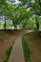 砧公園サイクリングコース