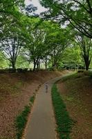 砧公園サイクリングコースをジョギングする人