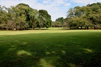 初秋の砧公園