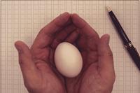 原稿用紙と卵を持つ手