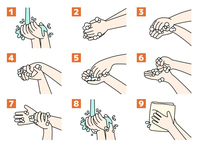手洗いの手順・方法