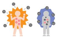 免疫力の強い人 免疫力の弱い人
