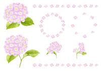 ピンクのアジサイの水彩画飾りセット