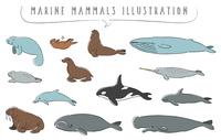 手描きの海洋哺乳類のイラストセット