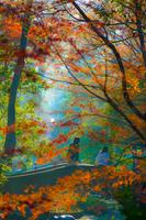 有栖川公園と紅葉