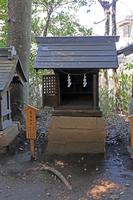 川越氷川神社(埼玉)