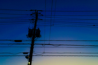 グラデーションの空と電線のシルエット
