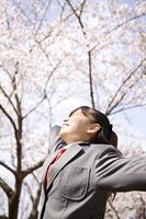 桜の下で背伸びをする女子高生