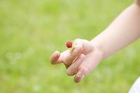 木の実を持つ女の子の手元