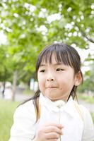 タンポポの綿を持つ女の子