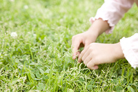 草を摘む女の子の手元