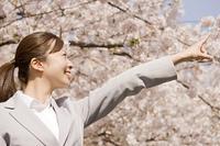 桜を指差すOL