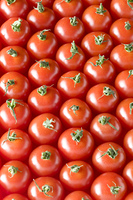 プチトマト