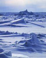 知床の流氷