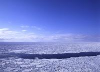 春の流氷原