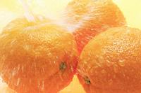 水とオレンジ