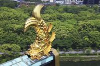 大阪城の鯱