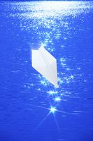 紙飛行機と水面