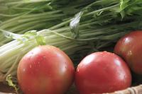 トマトと水菜