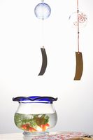 風鈴と金魚鉢と団扇