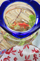 風鈴と団扇とスダレと金魚鉢