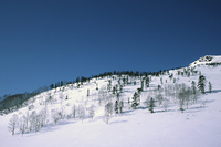 北海道美幌峠の雪山