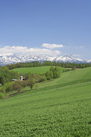 山並みと草原